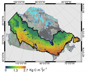 Figure 3: Ten year average MODIS GPP for the Canadian boreal.