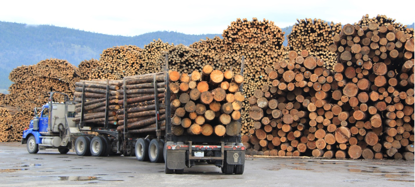 A lumber yard in the Rocky Mountain Foothills near Grande Cache, Alberta. © 2013 Paul Pickell